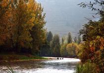 以勒河秋景