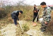 納雍縣文廣局、婦聯、文聯到老凹壩鄉植樹造林