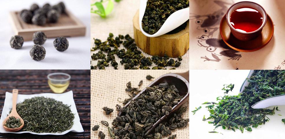 貴州好茶這麼多,哪款才是你最愛?