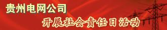 貴州電網公司開展社會責任日活動
