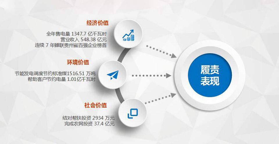 2016年貴州電網公司履責表現