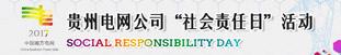 """貴州電網公司2017年""""社會責任日""""活動"""