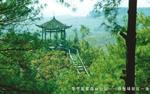 畢節國家森林公園──拱攏坪