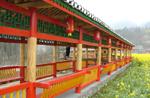 中華布依第一寨