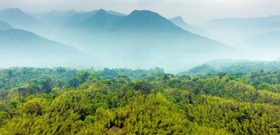 當脫貧攻堅遇上脆弱生態——來自貴州國家生態文明試驗區的報告