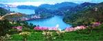 美麗的茶山.鏡湖