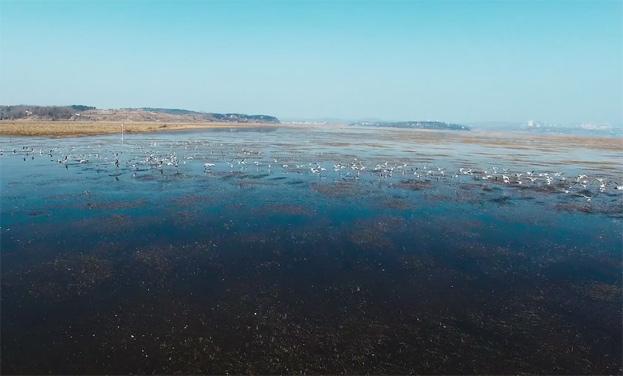 鳥瞰綠色貴州:高原之上品草海