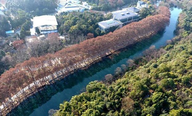 航拍貴陽花溪平橋景區冬日迷人景致