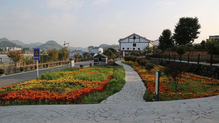 贵州花茂村:村庄变景区 村民腰包鼓