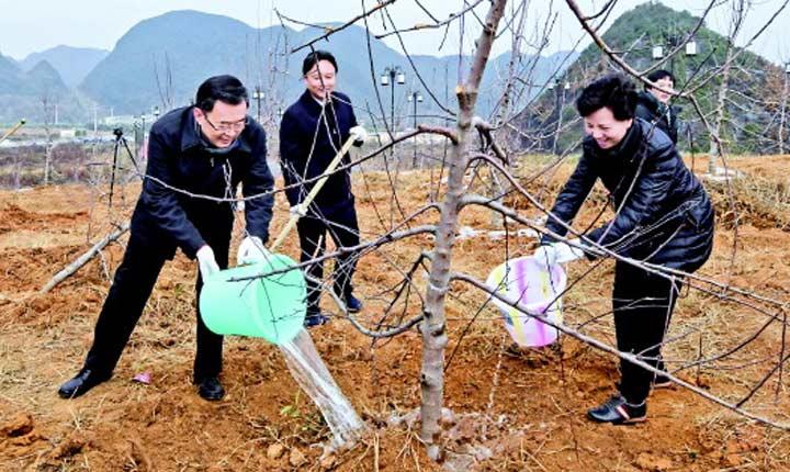 贵州:建设绿色家园 创造美好生活