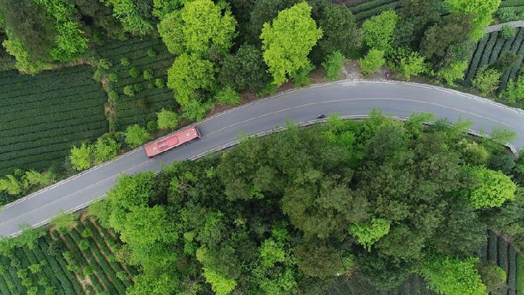 貴州湄潭:四好農村路助力鄉村振興