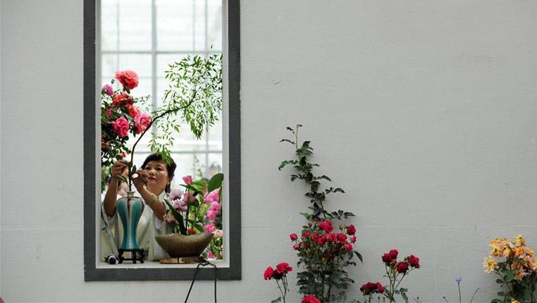 貴州:月季花開引客來