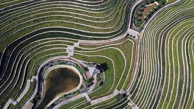 贵州大方:城镇中的美丽梯田