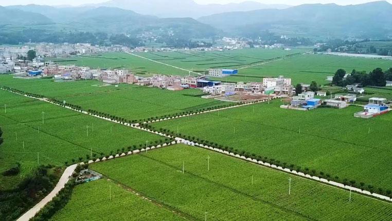 鸟瞰贵州烟海