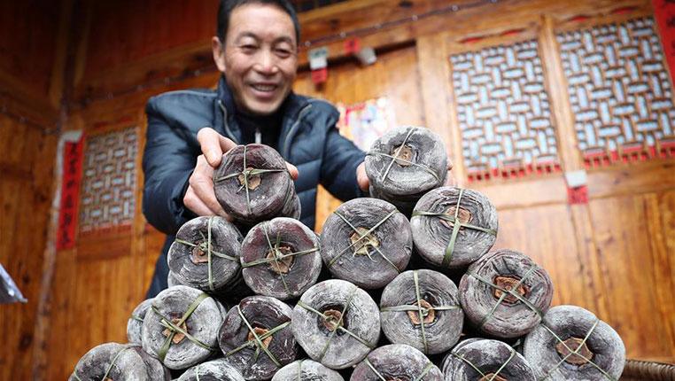 貴州玉屏:柿子豐收 助農增收