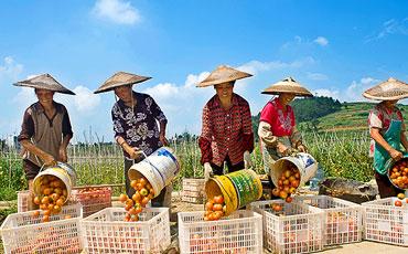 甕安:建設宜居鄉村 提升農民幸福感