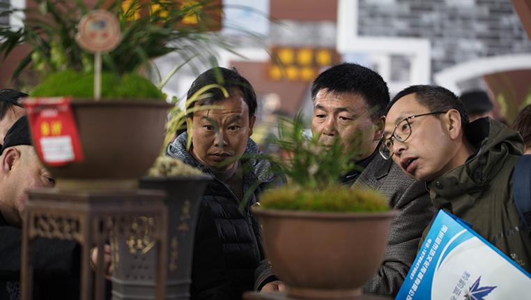 第二十九屆中國蘭花博覽會在貴州惠水開幕
