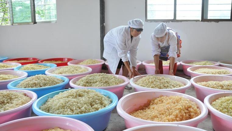 貴州織金:皂角加工帶動脫貧致富