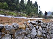 安順完成治理石漠化面積115.82平方公裏