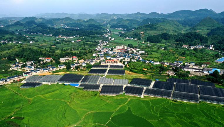 """貴州花茂村:""""農旅文一體化""""打造美麗新農村"""