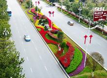 """提升城市景觀 打造""""濱湖花城""""我們在行動"""