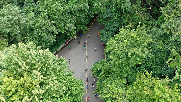 """鳥瞰""""城市綠肺""""——貴陽黔靈山公園"""
