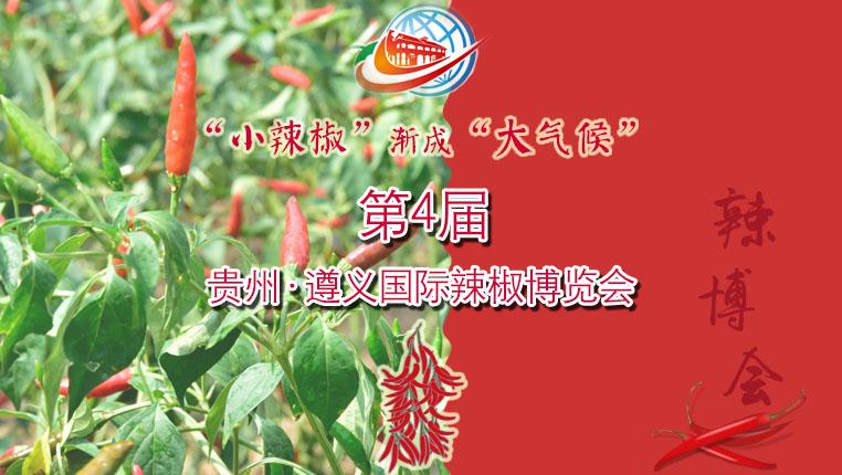 """【H5】""""小辣椒""""漸成(cheng)""""大氣候"""""""