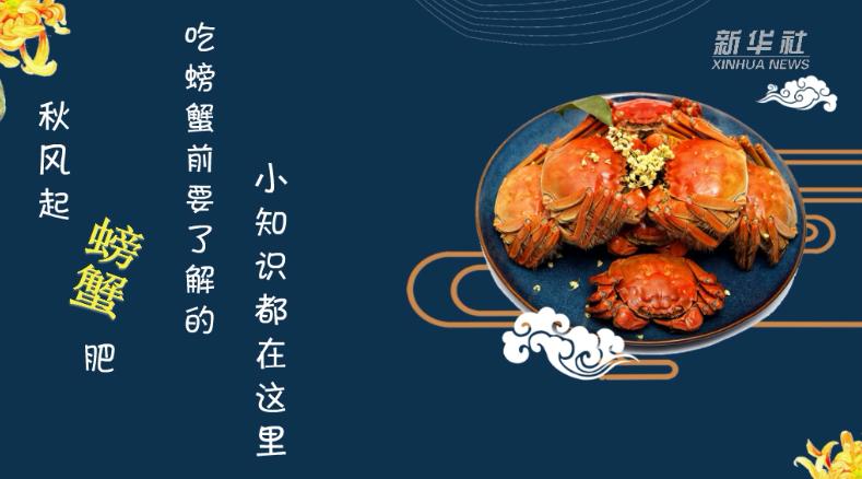 秋風起,螃蟹肥!吃螃蟹前要了解的小知識都在這裏