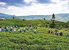 黔西南五年實現旅遊扶貧7萬余人