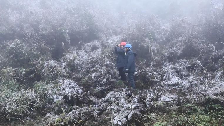 走村串寨!貴州松桃電力員工的冰雪巡山路