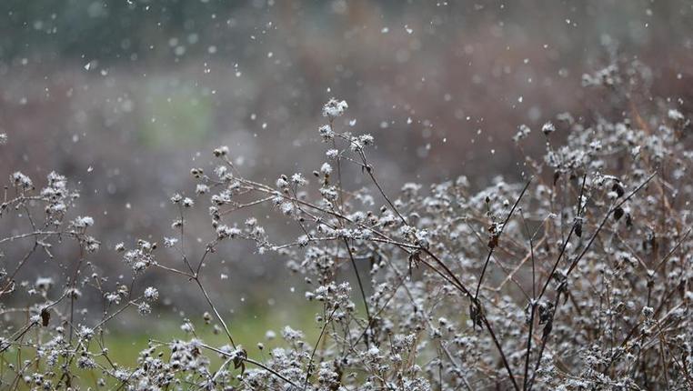 貴州西部地區迎來降雪天氣