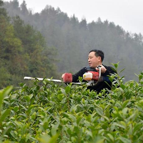 貴州編制10項食用農産品標準助力農村産業發展