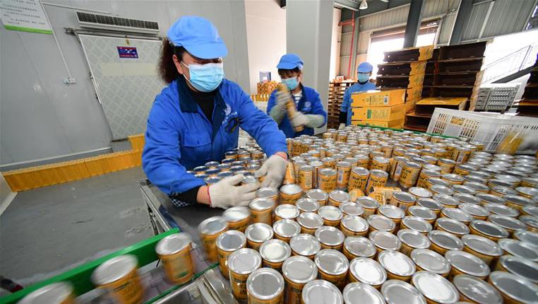 貴州龍裏:刺梨加工企業全面復産