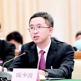"""陳少波代表:""""第一時間""""是貴州戰疫戰貧的制勝法寶"""