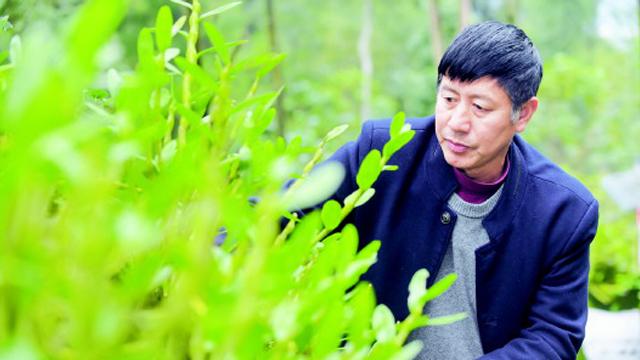 貴州省力促健康醫藥和中藥材産業深度融合