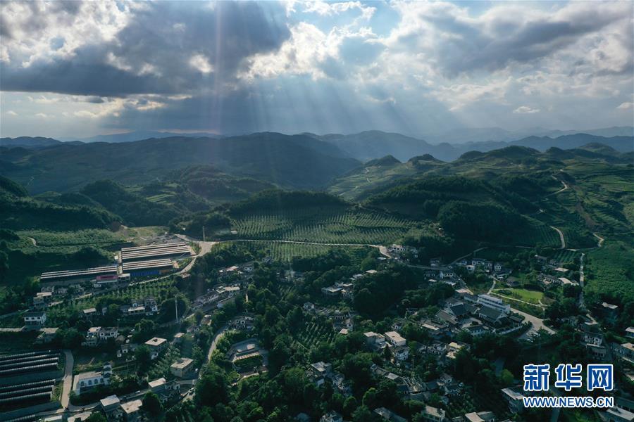 貴州海雀:綠水青山成戰勝貧困的金山銀山