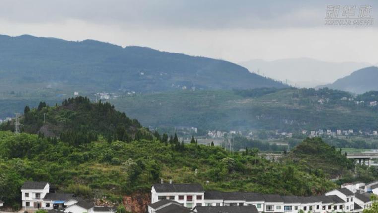 貴州:青杠壩村的幸福致富路