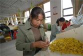 貴州玉屏:確保易地扶貧搬遷群眾持續就業穩定增收