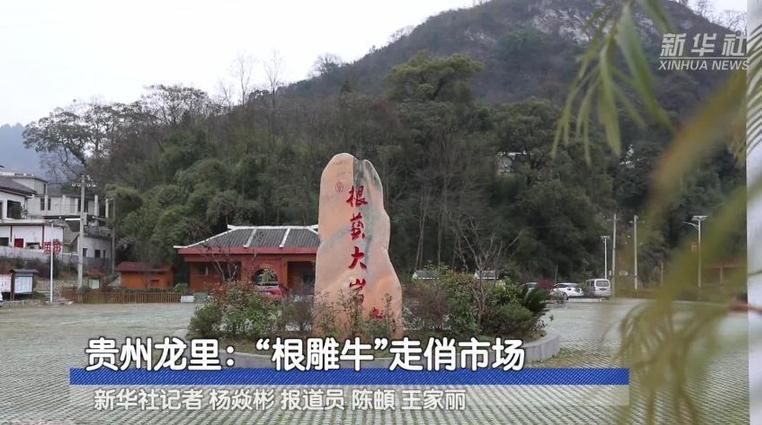 """貴州龍裏:""""根雕牛""""走俏市場"""