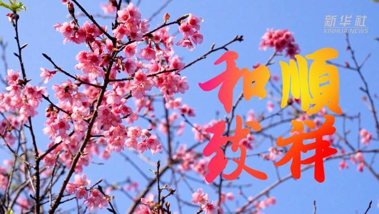 字裏藏情慶新春|和順致祥