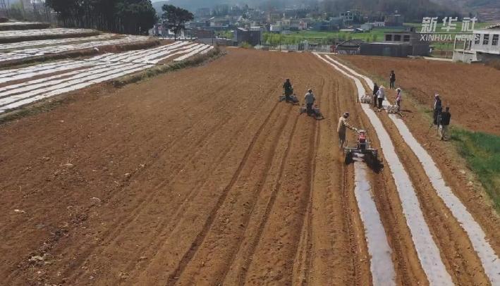 貴州威寧:春耕正當時 地頭農機忙