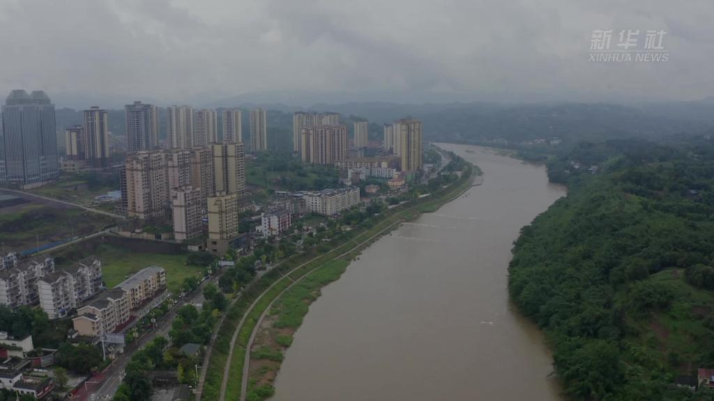 追夢人· 老外看中國脫貧 | 竹林裏的楊貴妃