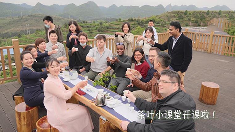 全球連線 | 國際青年中國行:茶葉小課堂開課啦