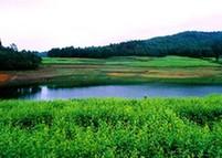 夜郎國家森林公園