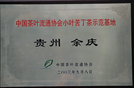 小叶苦丁茶生产基地图片